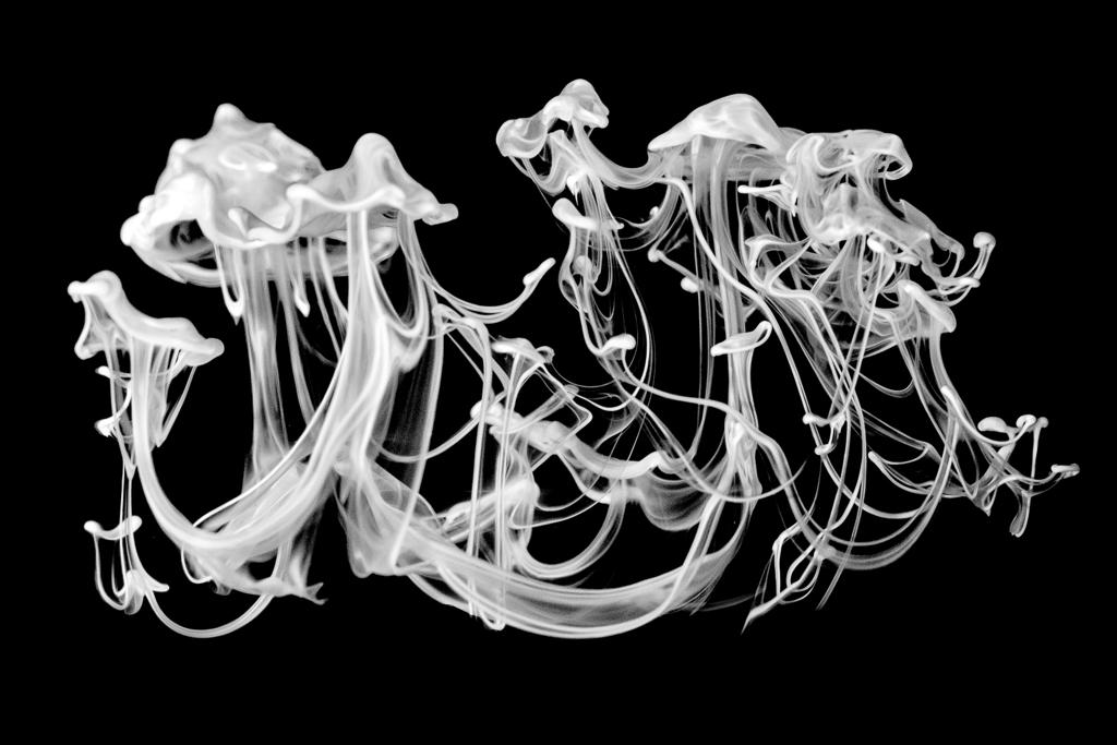 "72 - ""Serendipity"" © 2014 Jeanne Mitcho (USA)"